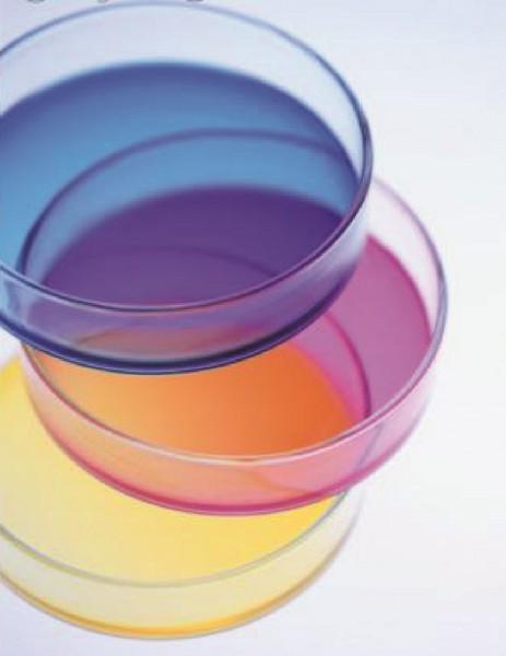 Petrischale, Glas